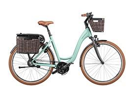 Ries-Muller-E-bike-2