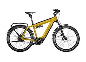 Ries-Muller-E-bike-4