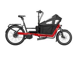 Ries-Muller-E-bike-5