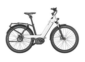 Ries-Muller-E-bike-6